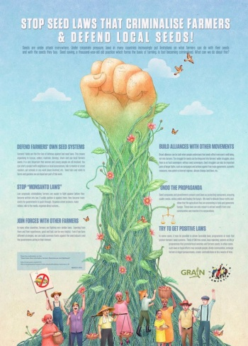 Seed laws poster EN THUMB